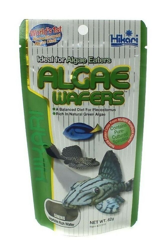Hikari algae wafers 500g 2 x 250g aquarium catfish pleco for Bottom feeder fish list