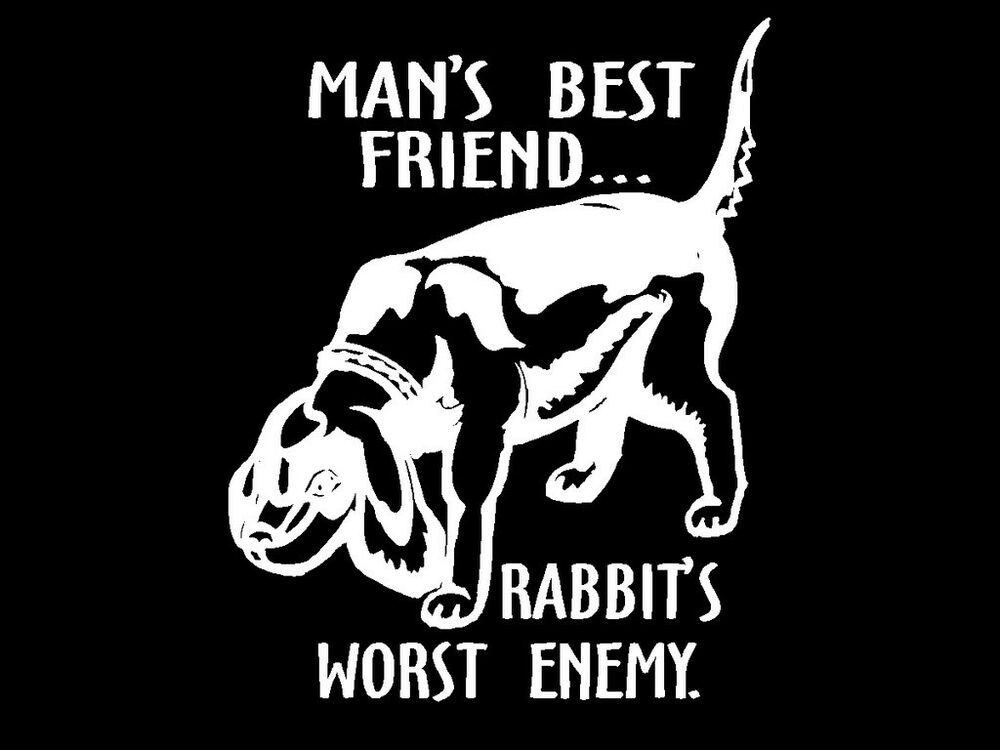rabbit hunting decal dog mans best friend rabbits worst