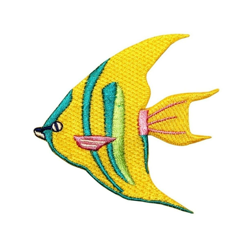 Id 0236 tropical angle fish patch exotic aquarium fishing for Iron in fish