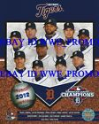 Detroit Tigers Team 2012 American League Champions MLB 8X10 BASEBALL PHOTO