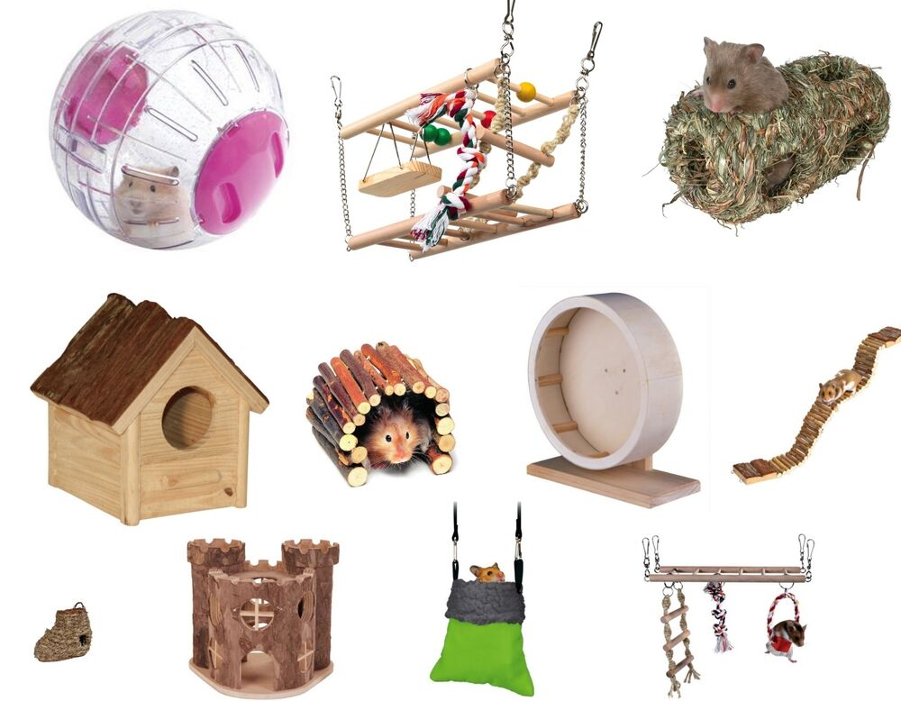 Toys For Your Hamster 96