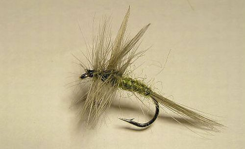 2- Blue Wing Olive- BWO - #20 Mayfly Dun - Dry Flies
