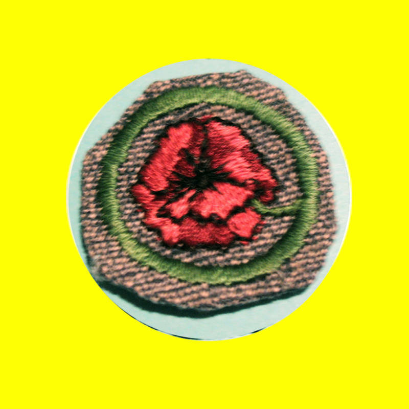garden flower 1938 intermediate girl scout crimped badge