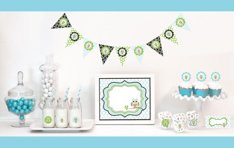 Blue owl boy baby shower party decorations starter kit ebay for Baby clothesline decoration baby shower