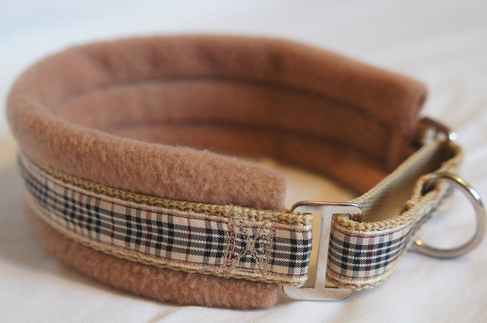 Lined Martingale Dog Collar