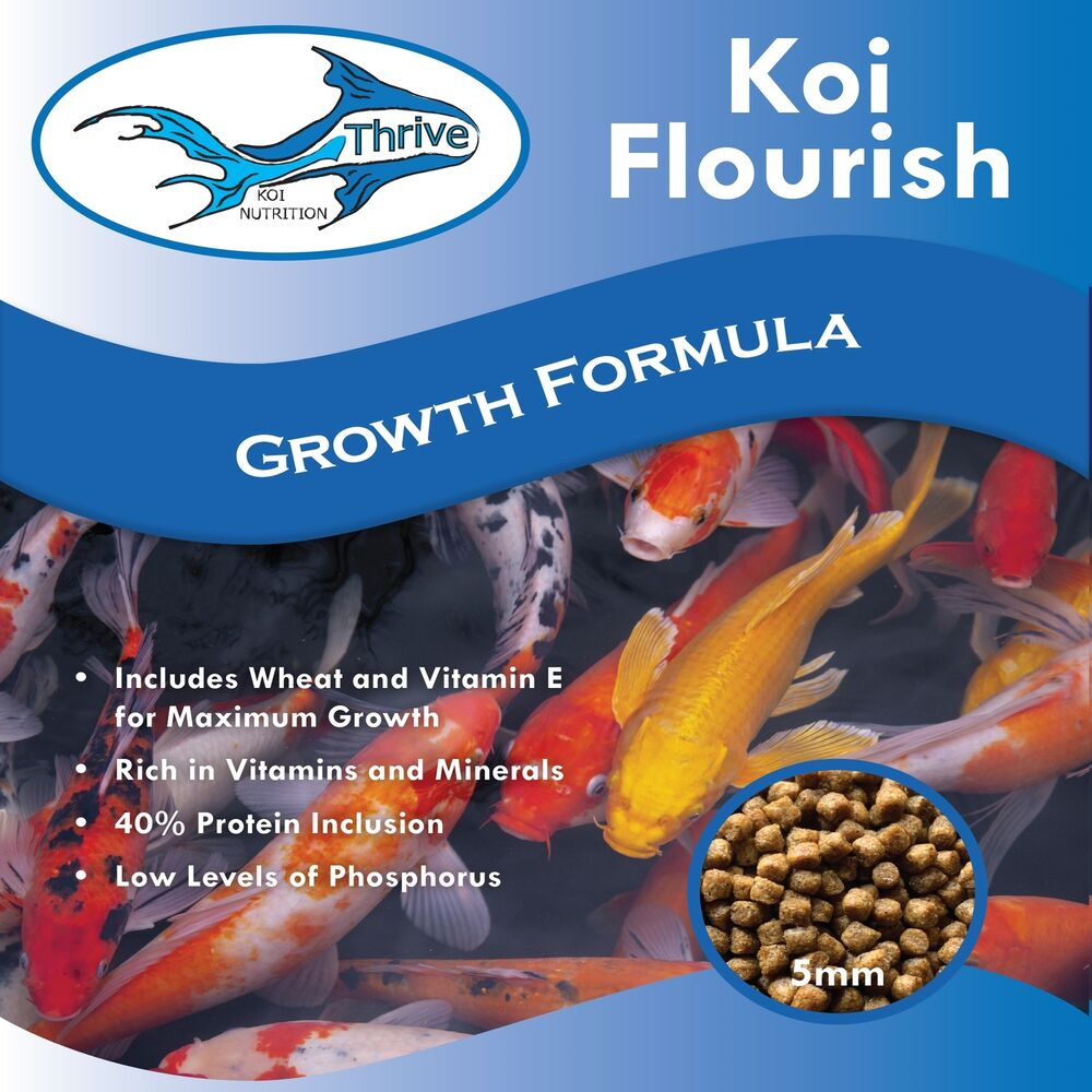Thrive koi flourish high protein growth formula fish food for Protein in fish