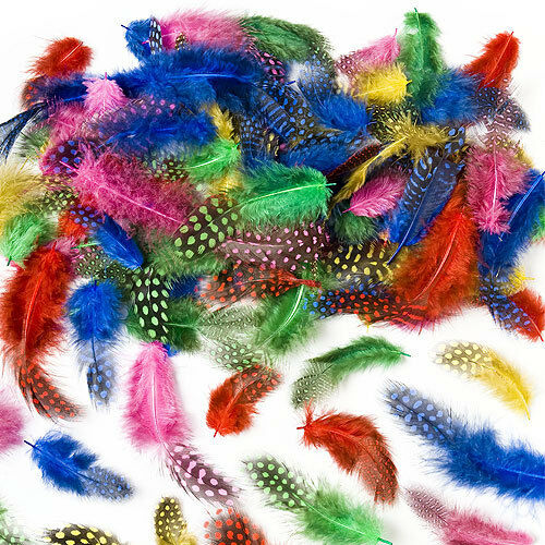 Speckled craft feathers for kids to decorate crafts cards for Where to buy craft feathers