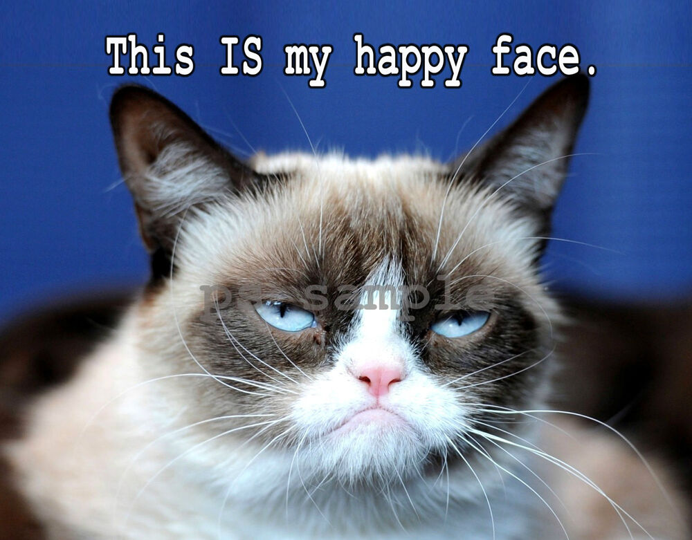 GRUMPY CAT -- Happy Face - Fridge Magnet | eBay