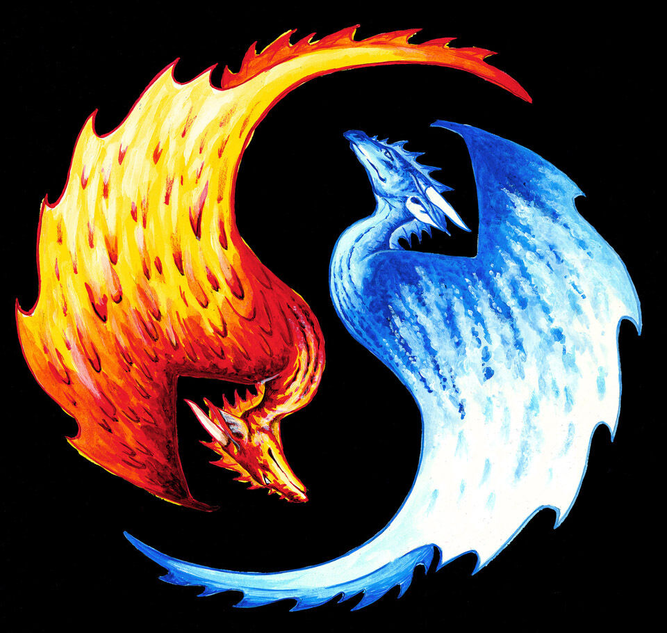 new t shirt yin yang dragon ice and fire dragons d d rpgs. Black Bedroom Furniture Sets. Home Design Ideas