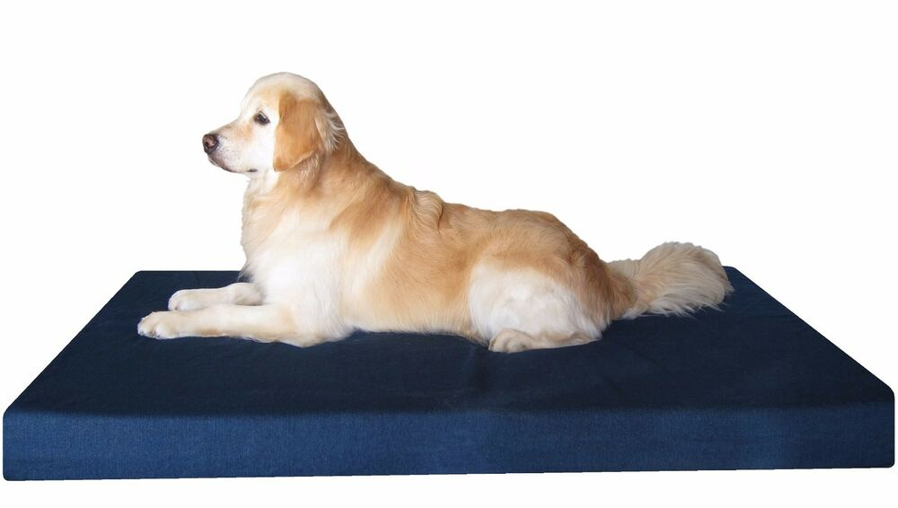 Dog Beds Large Waterproof