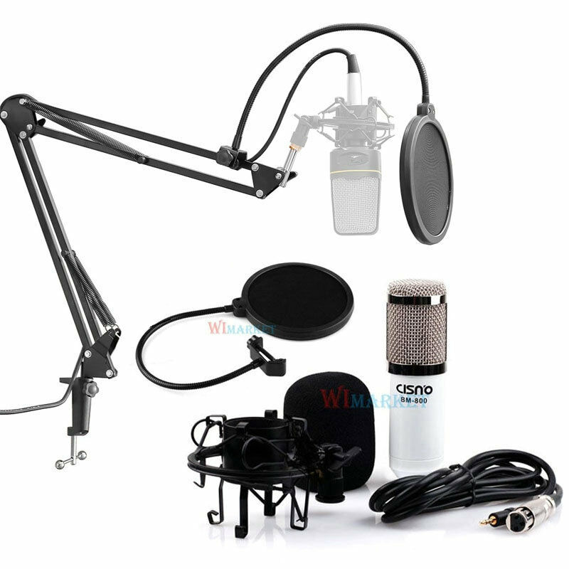 condenser microphone professional studio sound recording w boom stand pop filter ebay. Black Bedroom Furniture Sets. Home Design Ideas