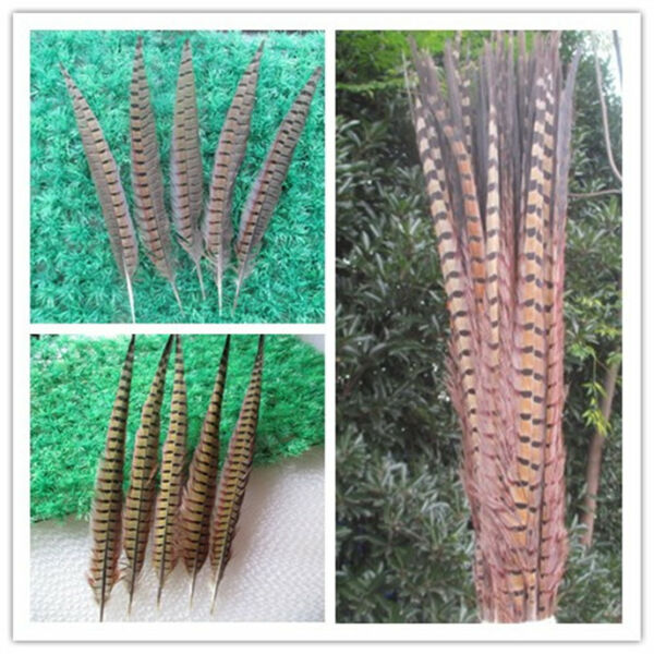 Wholesale 10-200 pcs beautiful natural pheasant tail feather 30-75 cm 12-30 inch