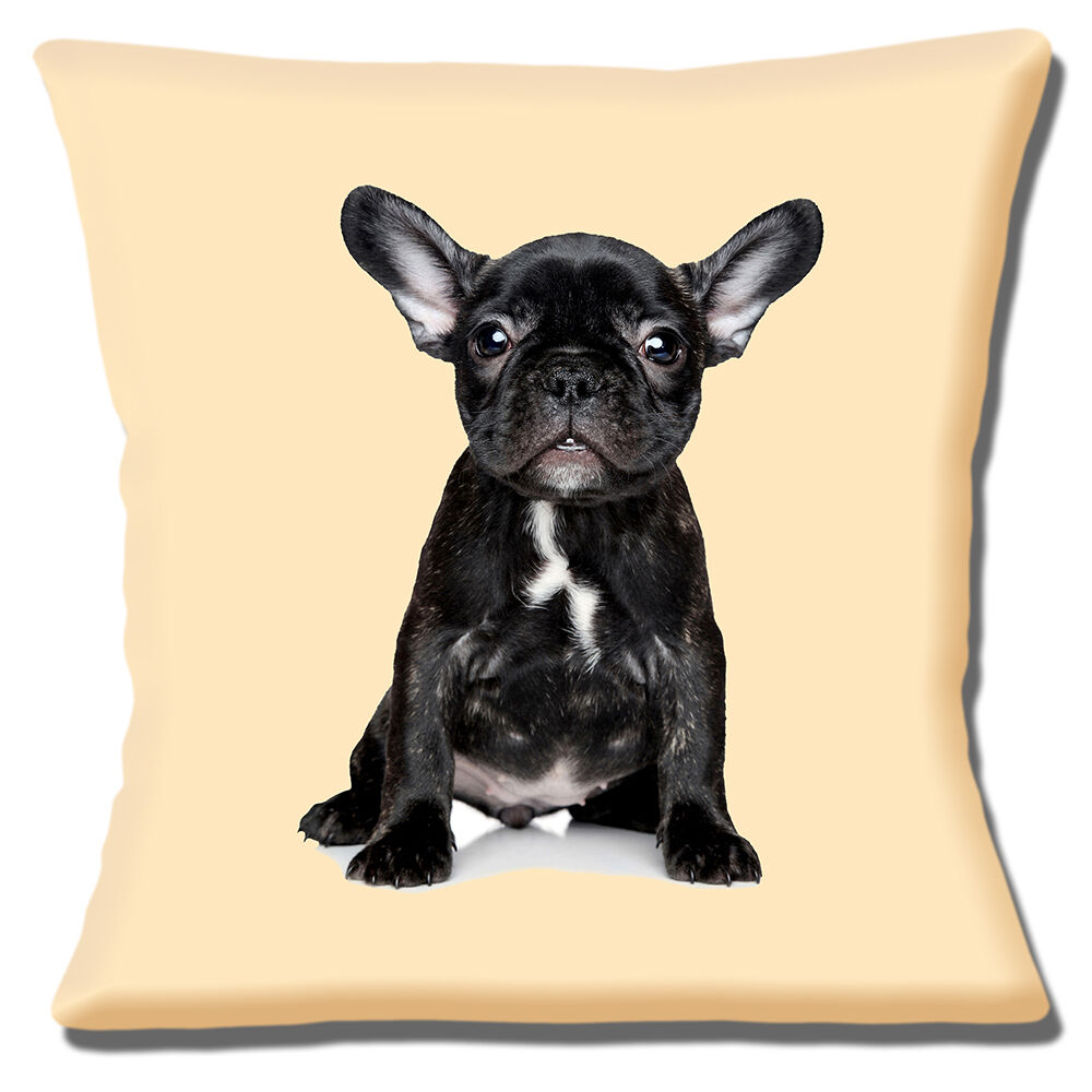 Details About French Bulldog Puppy Cushion Cover 16 X16 40cm Brindle Black White On Cream