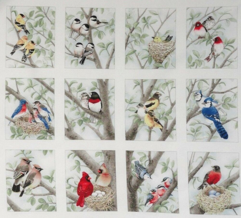 12 Block Fabric Panel Beautiful Bird Quilt Squares