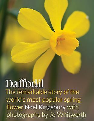 Daffodil The Remarkable Story Of The World 39 S Most Popular