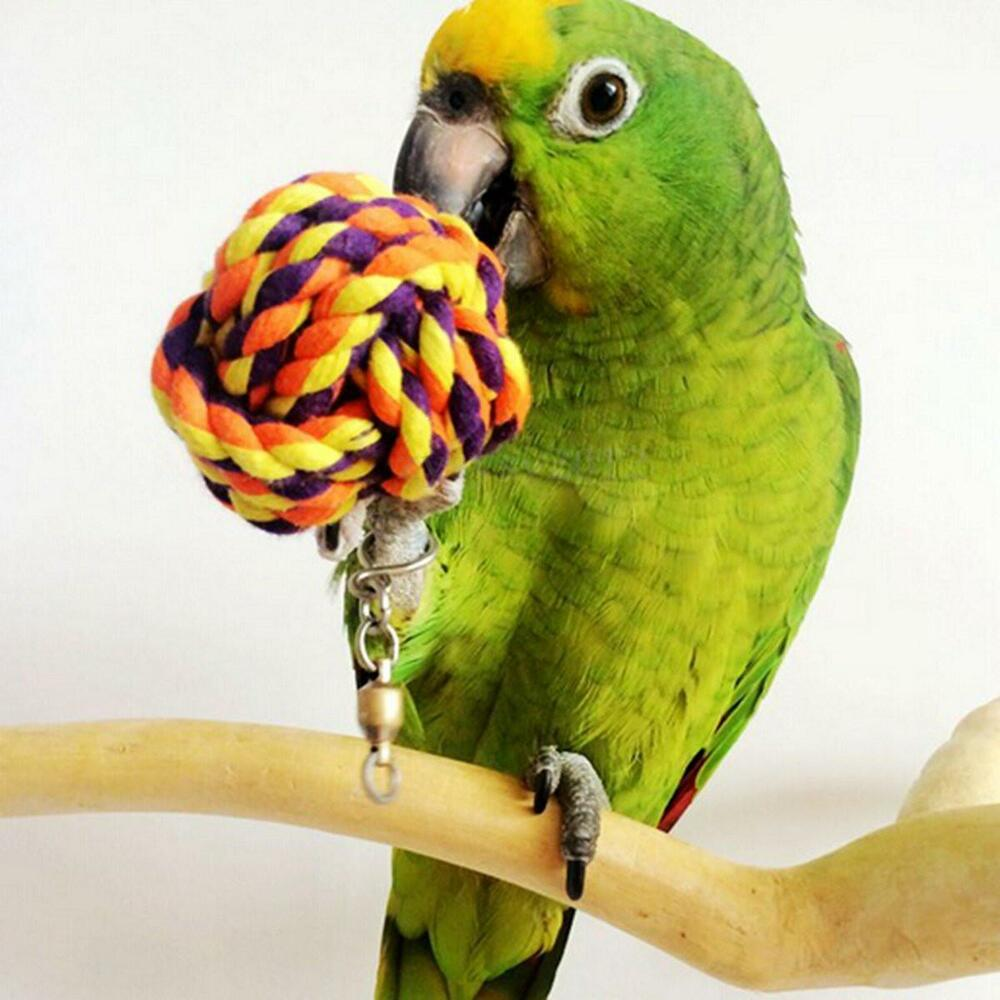 Parakeet Chew Toys : Pet bird bites toy parrot chew ball toys swing cage