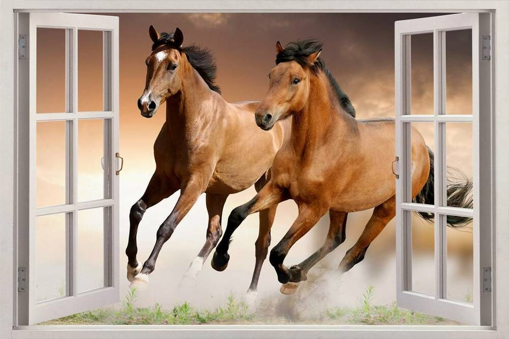 Horses 3d window view decal wall sticker home decor art for Window horses