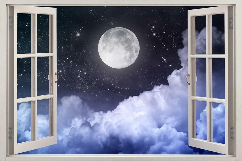 Full Wall Mural Decals: Full Moon Night 3D Window View Decal WALL STICKER Home