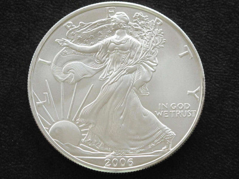 2006 Liberty Walking American Silver Eagle Dollar Coin Ebay