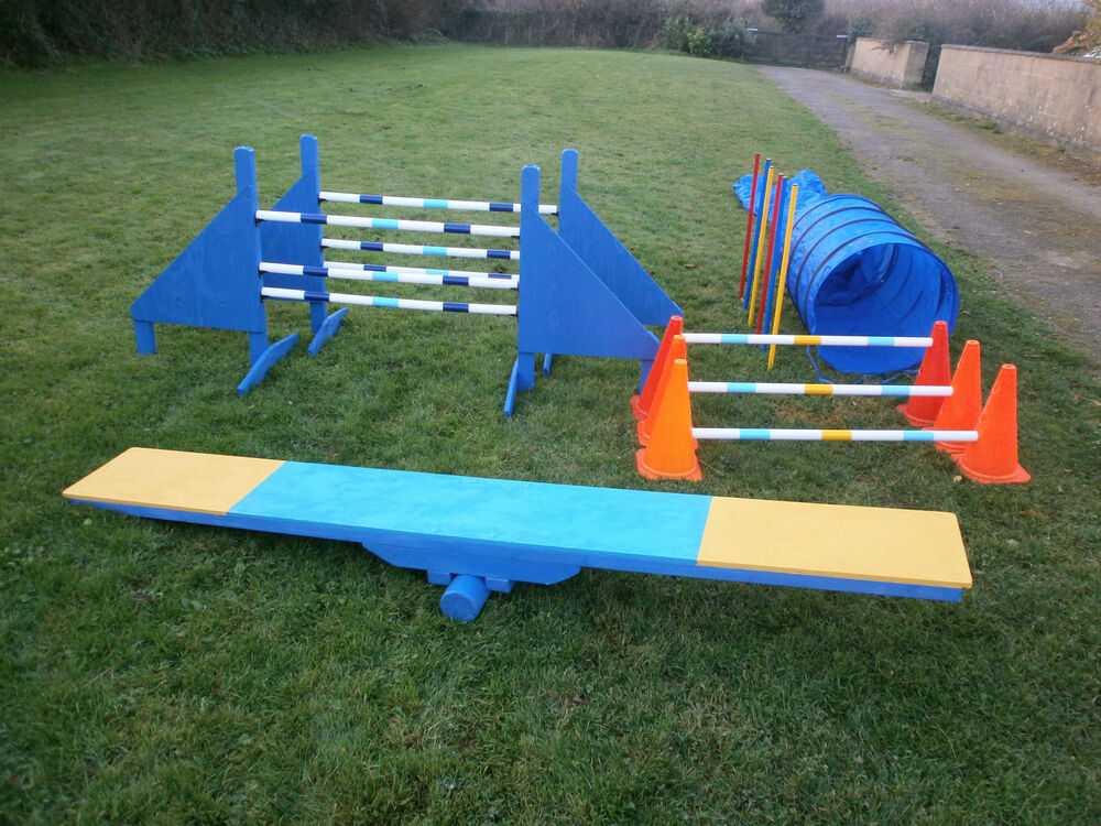Training Your Dog For Agility