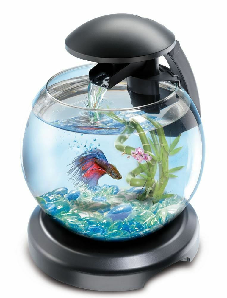 Tetra cascade globe glass fish tank with led light filter for Small glass fish tank