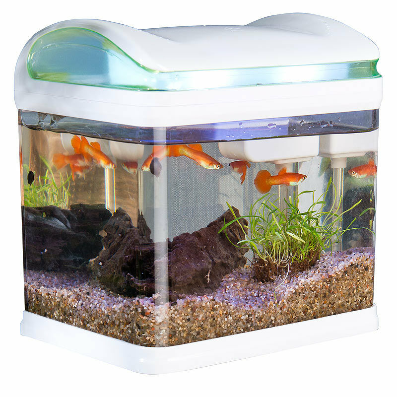 aquarium transport fischbecken mit filter led beleuchtung und usb 3 3 liter ebay. Black Bedroom Furniture Sets. Home Design Ideas