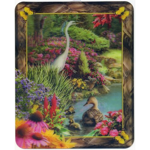 white-heron-and-baby-ducks-8-x-10-inch-lenticular-3d-picture-new-fantastic-3d