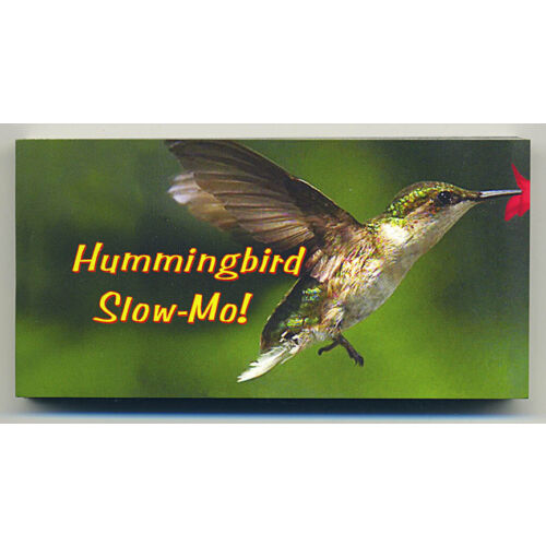 hummingbird-in-slow-motion-small-4-by-2-inch-motion-flip-book-new