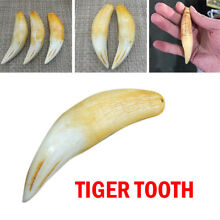 Tiger Tooth Charm Pendant Animal Tooth Pendant Protect Talisman US