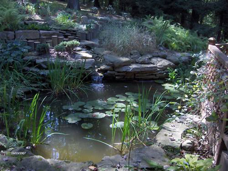 Large Pro Grade 16 39 X 16 39 Complete Backyard Pond Kit Ebay