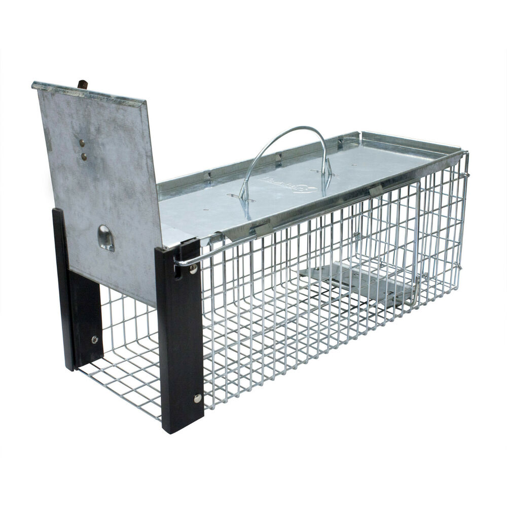 Live trap foe chipmunk rat small squirrels weasels vole humane trap havahart ebay - Volle trap ...