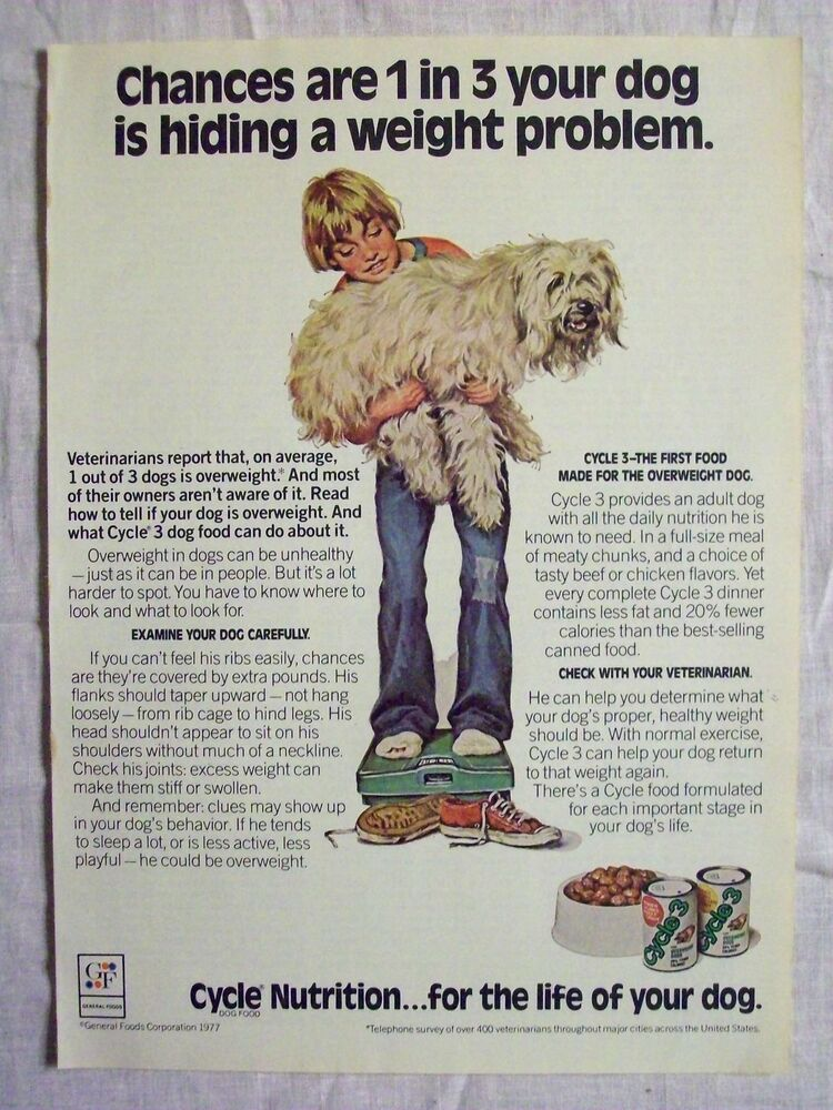 Eukanuba Puppy Food >> 1978 Magazine Advertisement Page Cycle 3 Canned Dog Food Vintage Ad | eBay