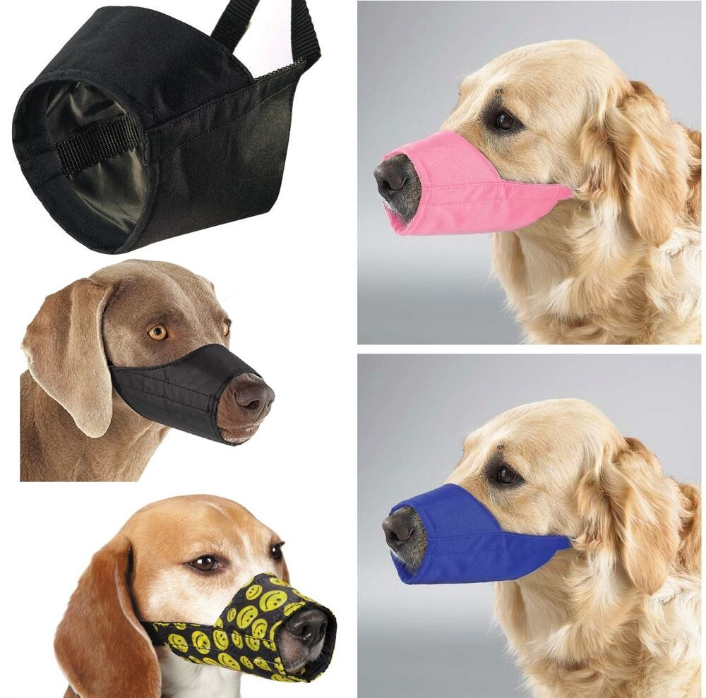 How To Make A Fabric Dog Muzzle