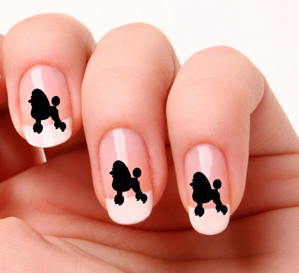 20 Nail Art Decals Transfers Stickers #508 Black Poodle