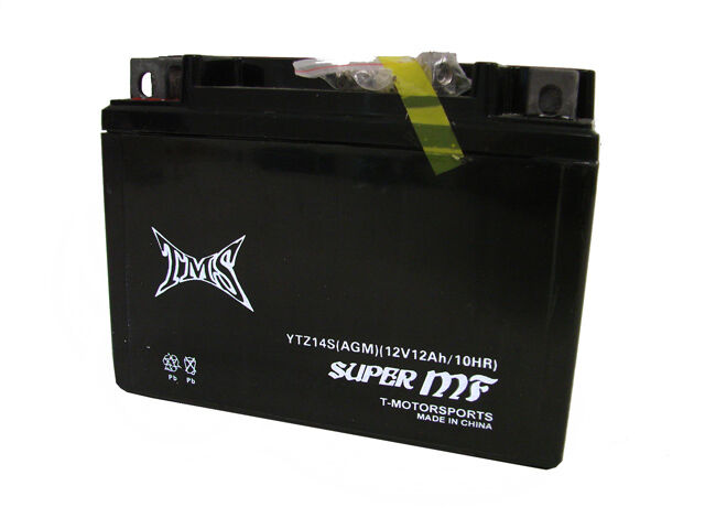 ytz14s battery for honda shadow spirit aero vt1100c c2 vt750 st1300 cb1100 dn 01 ebay. Black Bedroom Furniture Sets. Home Design Ideas