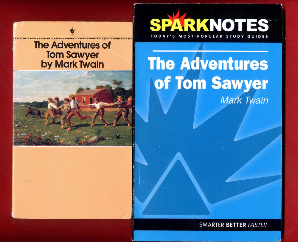 Tom sawyer study notes chapter 1
