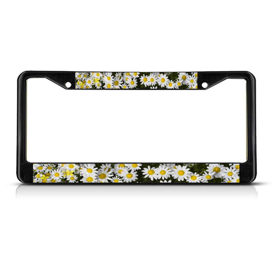 License Plate Holders >> DAISIES FLOWERS Black Metal License Plate Frame Tag Holder | eBay