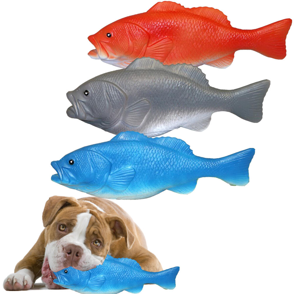 Squeaky fish pet dog puppy chew toy fetch outdoor play fun for Is fish bad for dogs