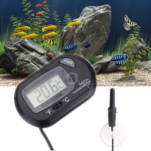 Digital lcd fish aquarium tank marine water thermometer for Fish tank temperature