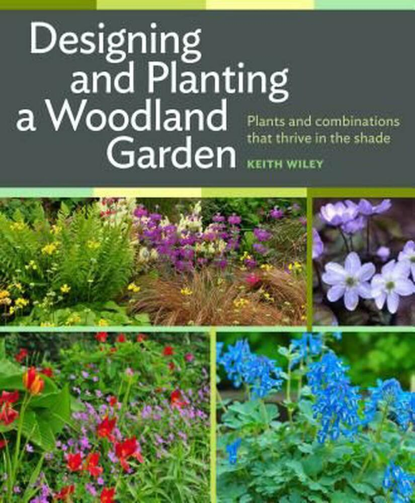 Designing and planting a woodland garden plants and for Planting a garden