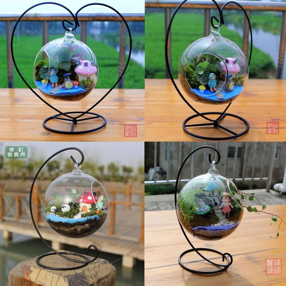 Hanging glass flowers plant vase terrarium container home for Glass home decor