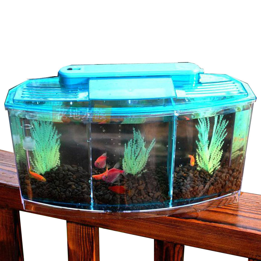 3 compartment acrylic fish shrimp tank small aquarium with for Fish tank lighting