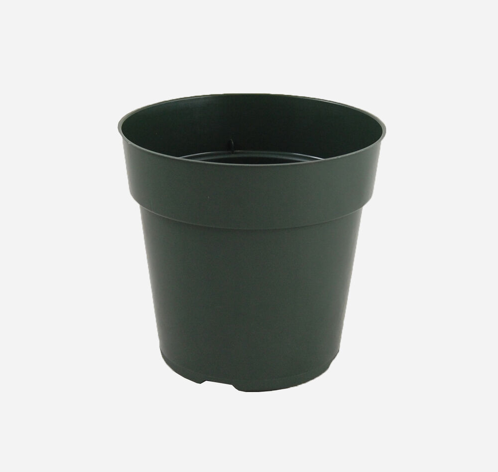 6 inch pots round green plastic flower herb plant growing for Garden pots