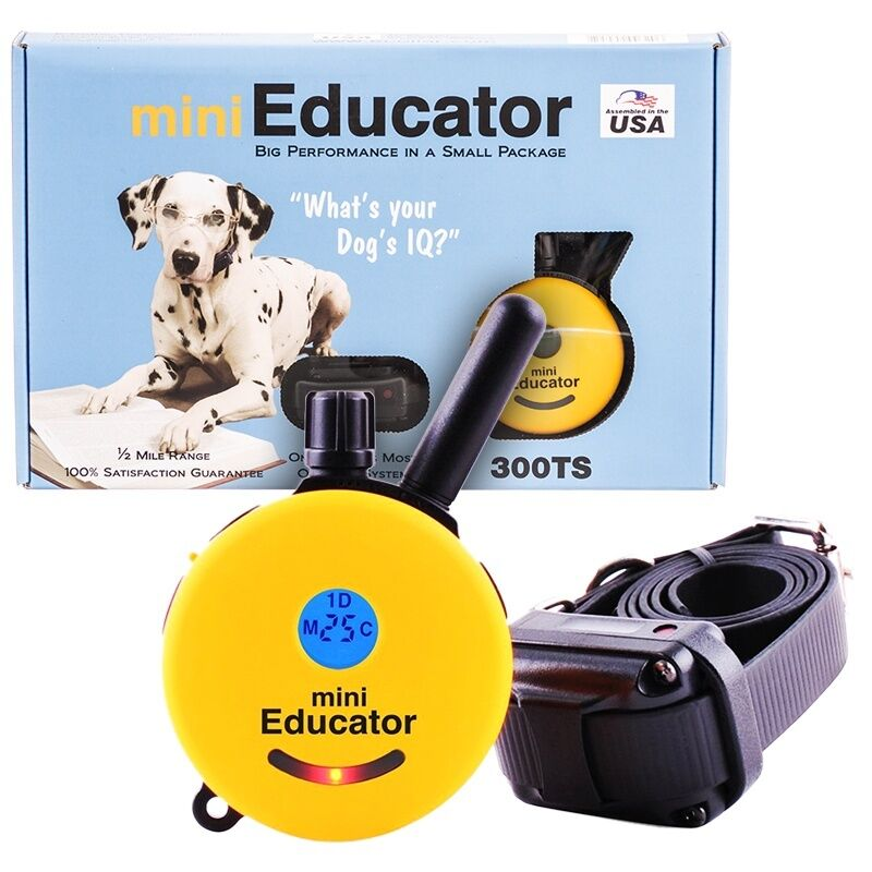 Educator Dog Training Collar