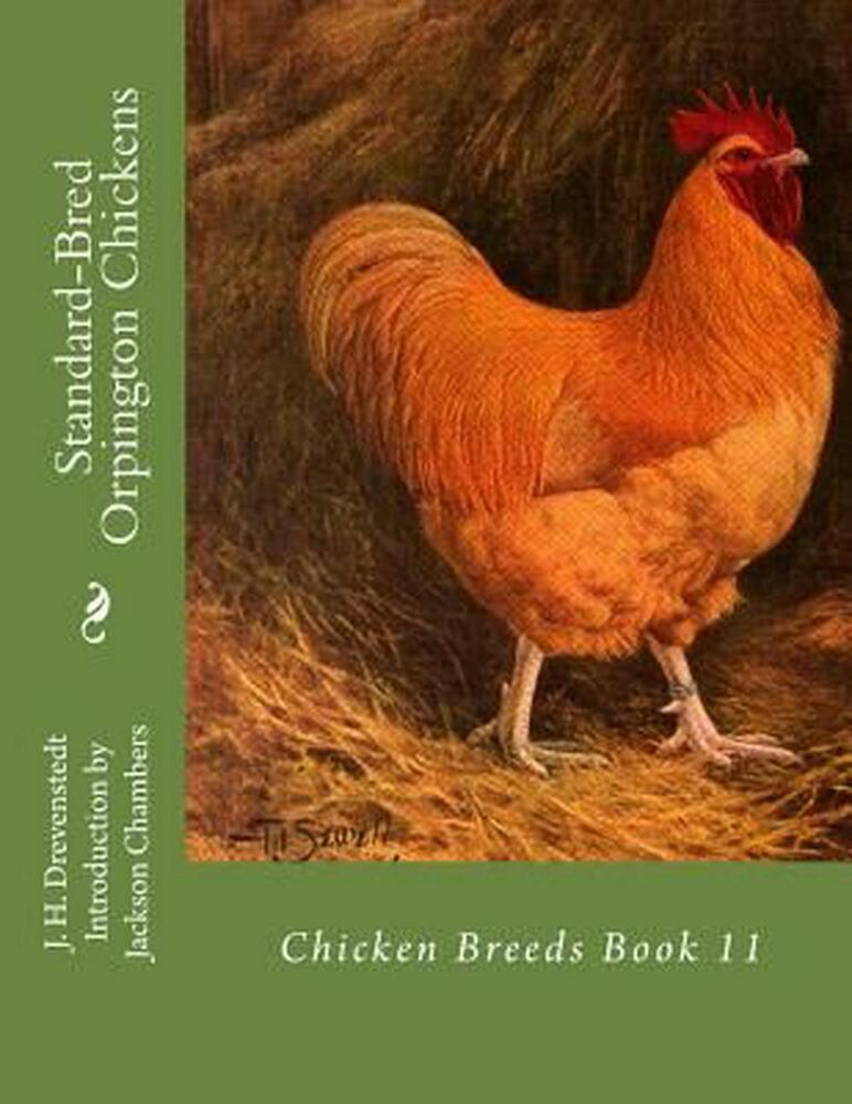 Selection Methods in Poultry Breeding: From Genetics to Genomics