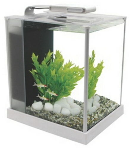 Fluval spec iii aquarium kit 2 8 gallon white ebay for Fluval fish tank