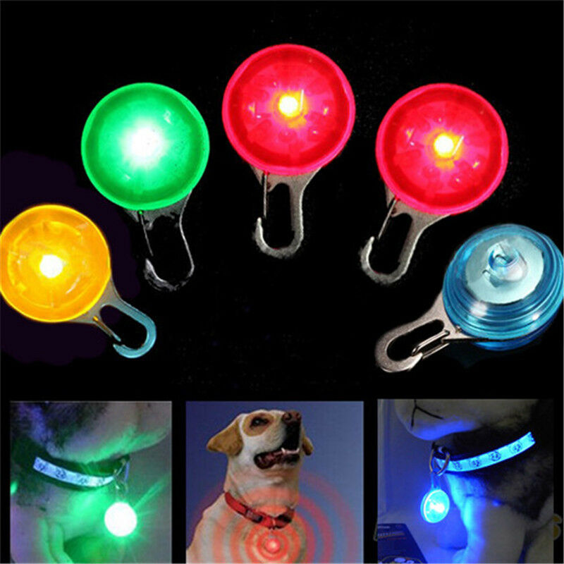 Pet Dog Cat Puppy Led Flashing Collar Tag Clip Buckle