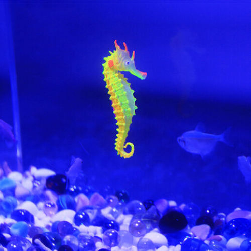 3pcs aquarium fish tank artificial sea horse seahorse for What do fish see