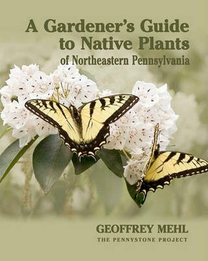 Native Pa Plants: NEW A Gardener's Guide To Native Plants Of Northeastern