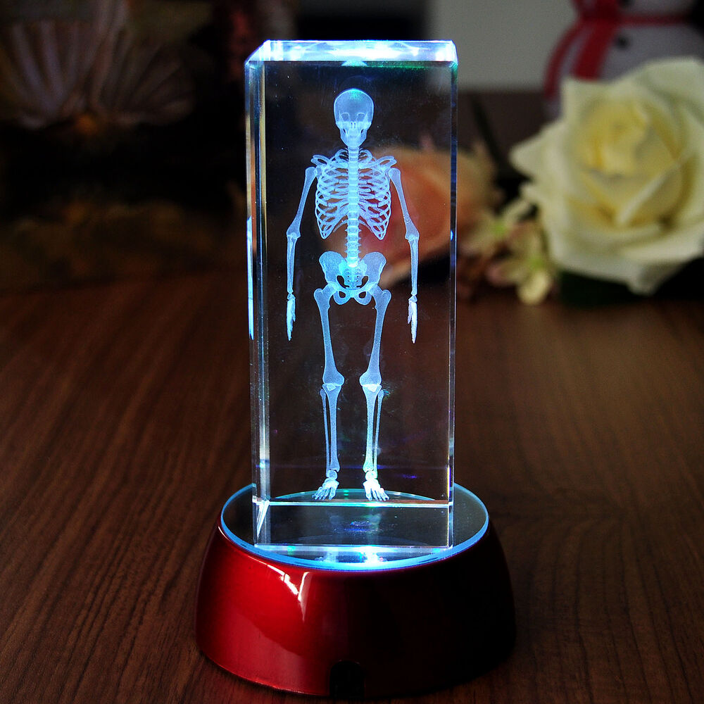 3d Laser Etched Crystal Scary Bones Paperweight Home Decor